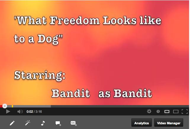 Screen Shot 2013-06-14 at 11.10.15 PM